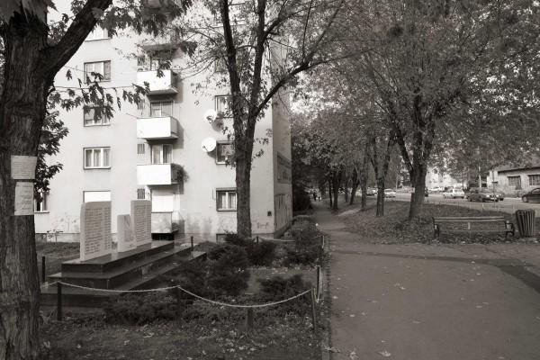 20121103_NNV_1762