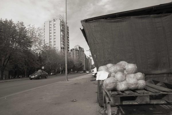 20121103_NNV_1770