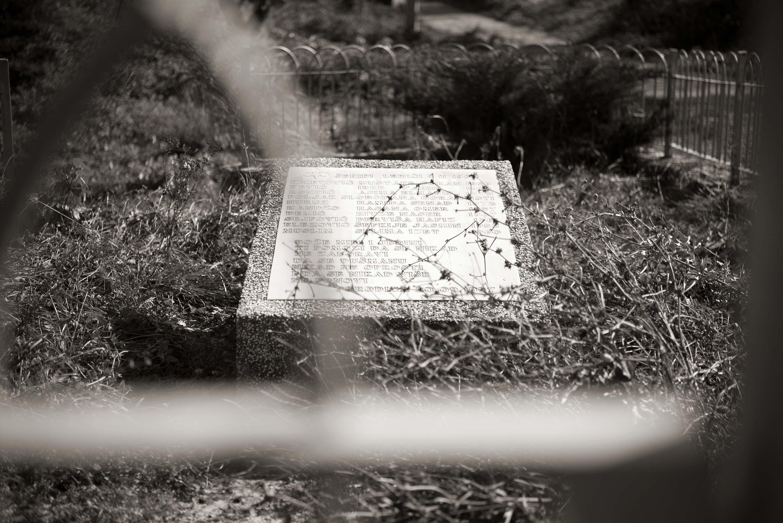 Trnovo, Ledići, Spomenik šehidima i poginulim borcima